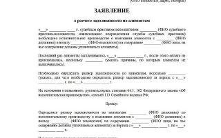 Взыскание задолженности по алиментам: подробная инструкция, образец заявления 2020
