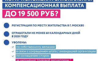 Как получить выплату 19500 рублей по безработице: пошаговая инструкция 2020