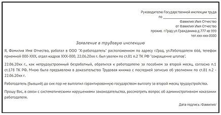Жалоба в трудовую инспекцию о нарушении трудовых прав: образец 2020, правила составления и подачи